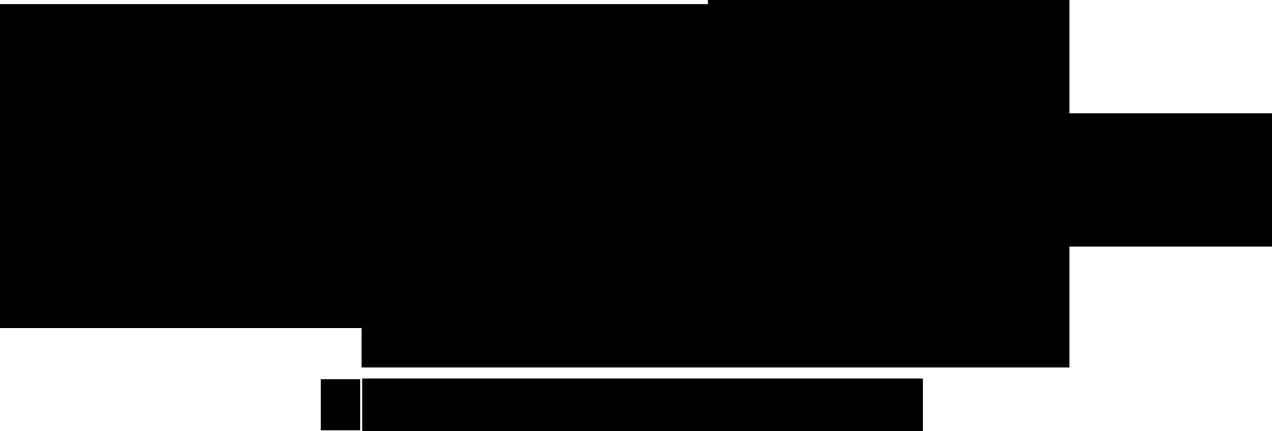 SaraTouijerLogo-black